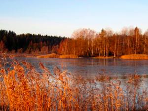 Kuva: Kari Koivisto, Kanaholma Salmen ulkoilualueen rannasta kuvattuna.